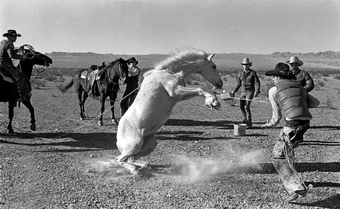 Дикий Запад. США, Аризона, 1980 год.