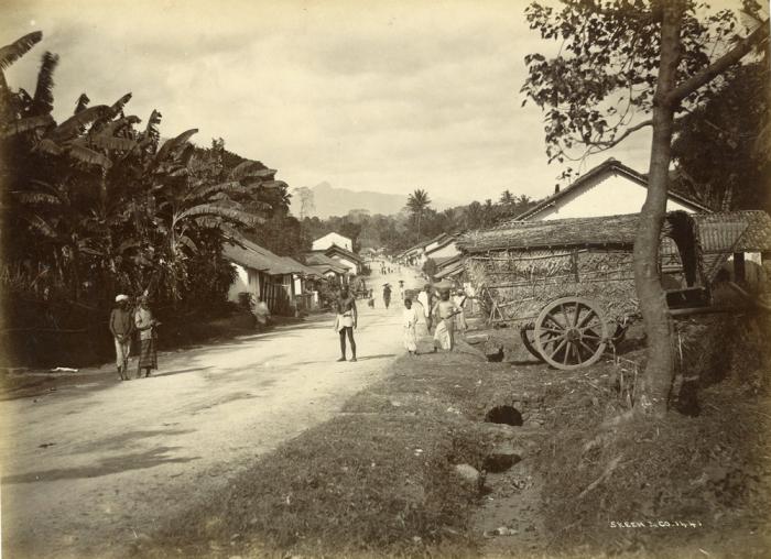 Деревня, которая расположена в регионе Коломбо.