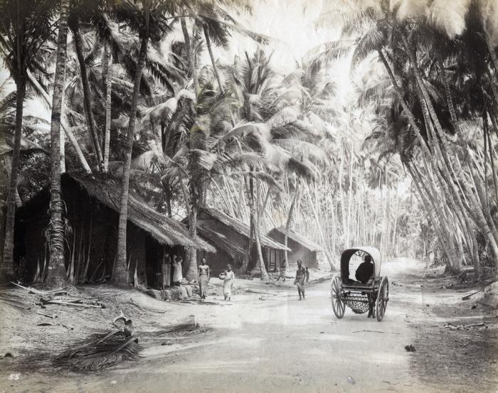 Просёлочная дорога в окрестностях Коломбо.