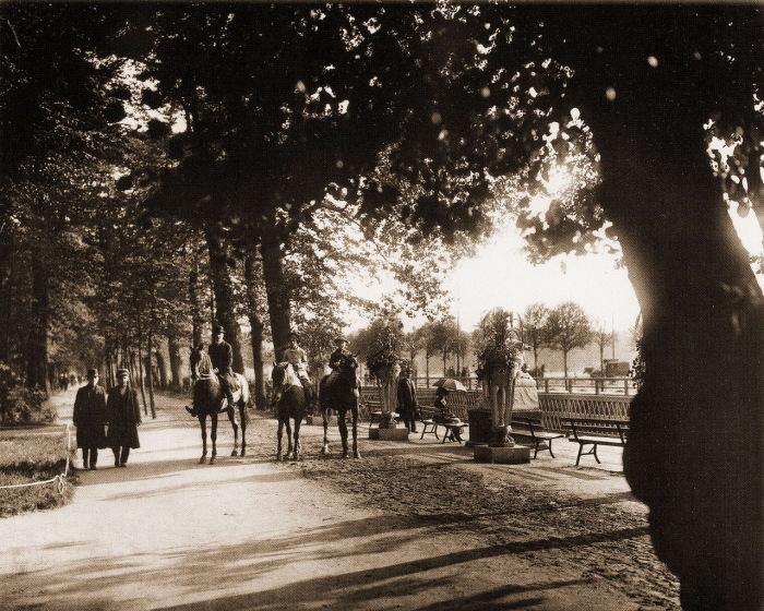 Прогулка на лошадях в Летнем саду.