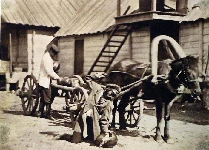 Казаки носят арбузы, 1876 год.