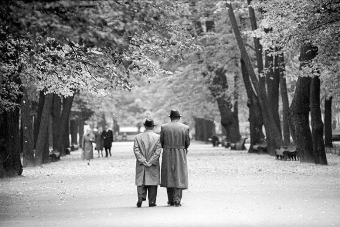 Памятник садово-паркового искусства. СССР, Ленинград, 1970-е годы.