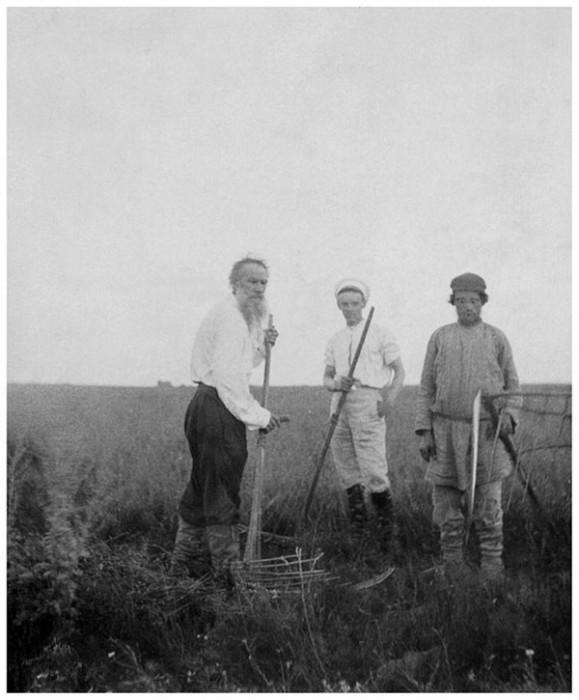 Лев Толстой работает в поле наравне с мужиками, 1890 год. Тульская губерния, Крапивенский уезд, деревня Ясная Поляна.