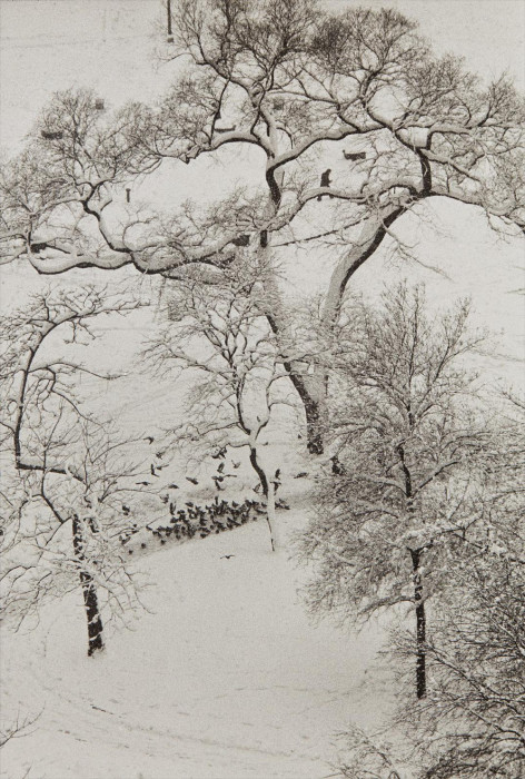 Заснеженный Вашингтон-Сквер-парк. США, Нью-Йорк, 1967 год.