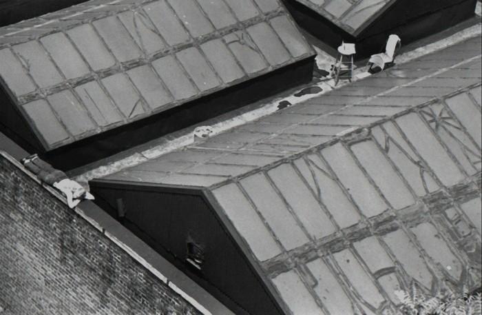 Художник на крыше. США, Нью-Йорк, 1977 год.
