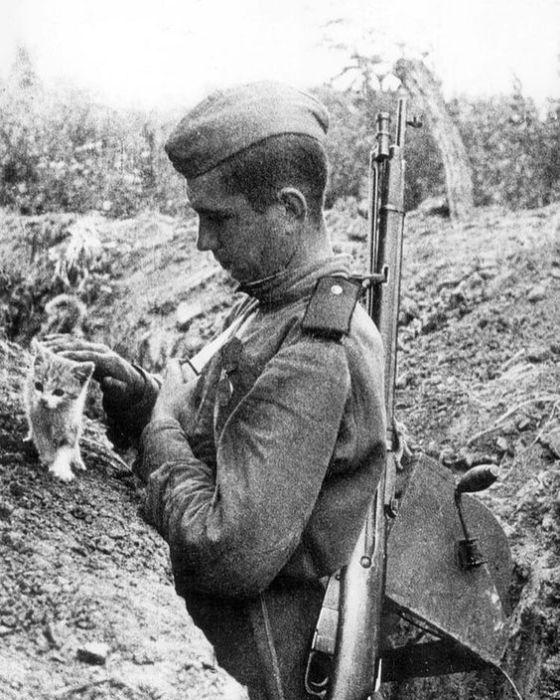 Боец РККА в окопе с котёнком.