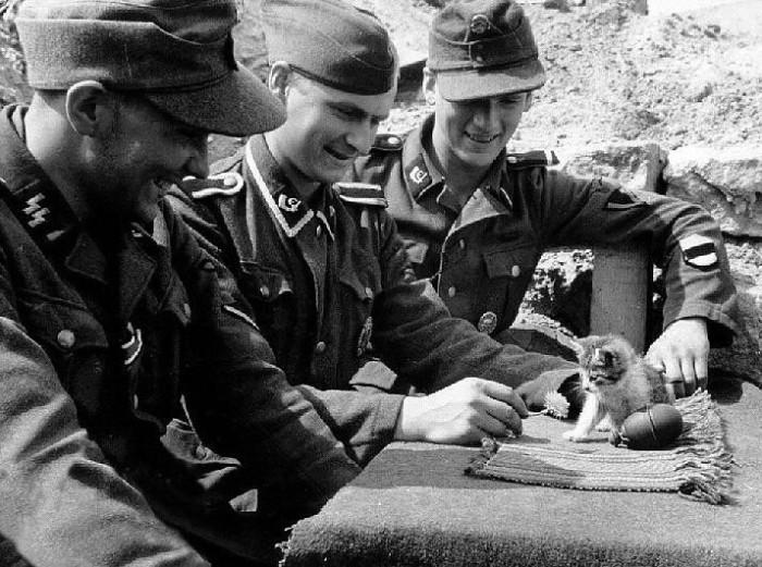 Немецкие солдаты играют с котенком на улице, 1943 год.