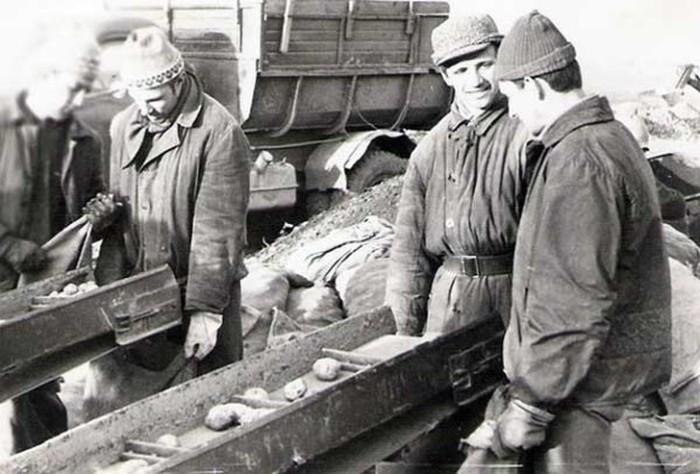Одним из неотъемлемых признаков жизни студентов в СССР была поездка «на картошку».