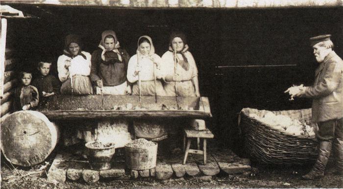 Заготовка капусты на зиму. Россия, 1890-е годы.
