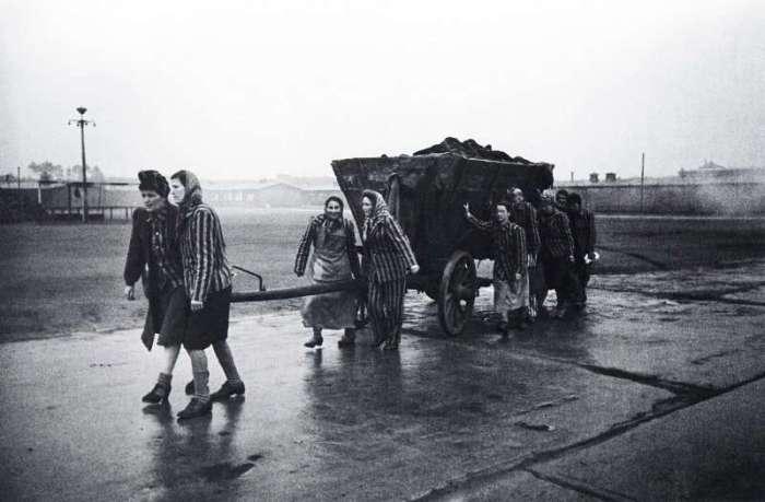 Освобождение из концентрационного лагеря Маутхаузен-Гузен. Австрия, 1945 год.