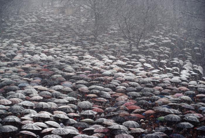 Бесконечное количество зонтиков. Польша, Кальвария-Зебжидовска, 1981 год.
