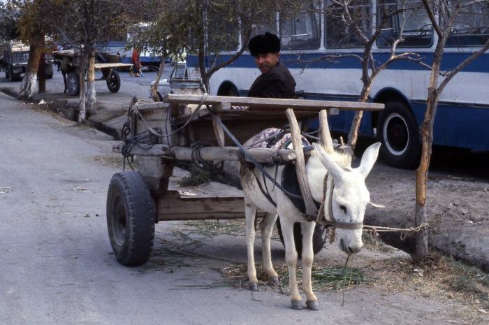 Городской транспорт в центре города. СССР, Узбекистан, Бухара, 1984 год.