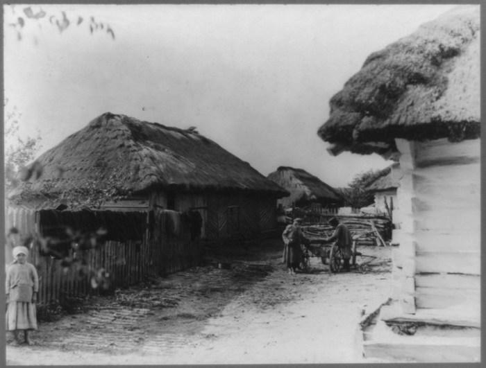 Подворье зажиточного крестьянина в селе Бородино. Россия, 1867 год.