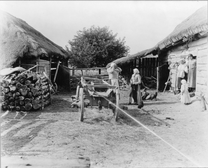 Заготовка дров на зиму. Россия, село Бородино, 1867 год.