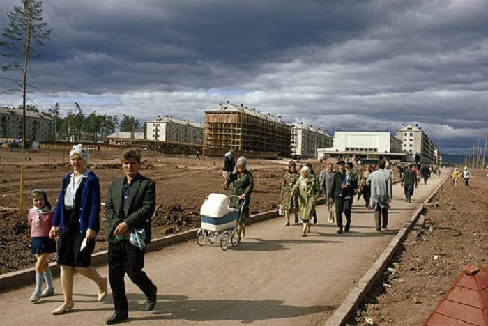 Новые жилые дома вытесняют таежные леса. СССР, Иркутская область, Братск.