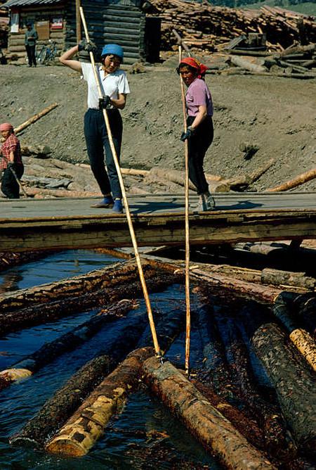 Женщины сортируют брёвна в каналах на лесоповале, озеро Байкал.