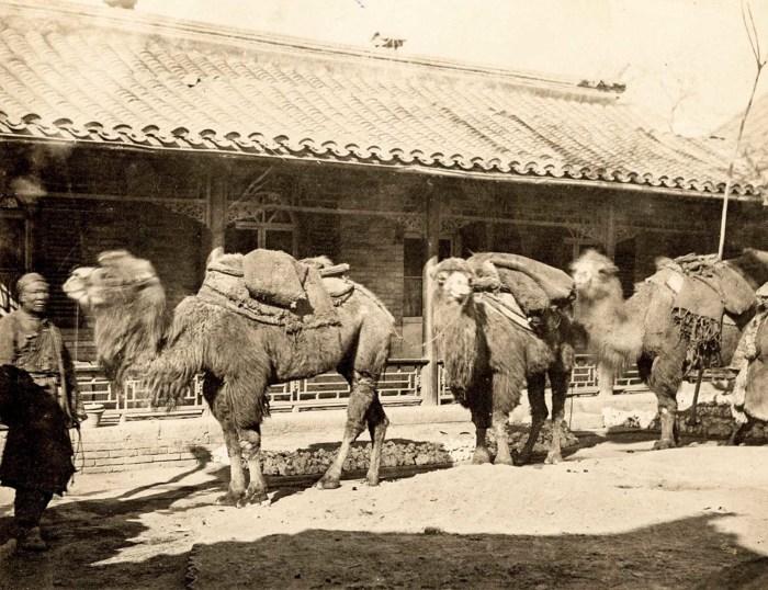 Фото путешественников 19-го века на Шелковом пути в Китае.