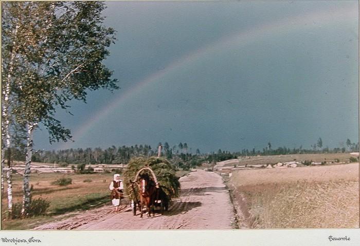 Воробьёва гора в деревне Воробьево. Калужская область, 1940-е годы.
