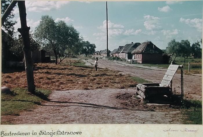 Заготовка сена методом полевой сушки. СССР, Калужская область, деревня Дальнее Натраново, 1943 год.