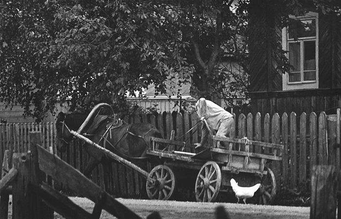 Ретро фотографии из архива Михаила Дашевского.