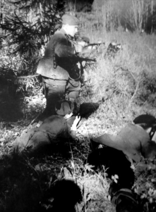 Бойцы партизанского отряда ведут бой в лесу в районе деревень Киевец в Ленинградской области.