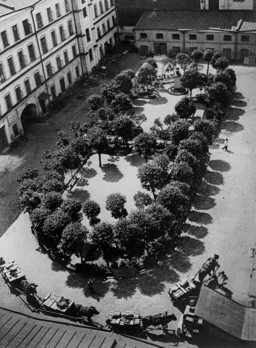 Повозки в одном из двориков, 1927 год.