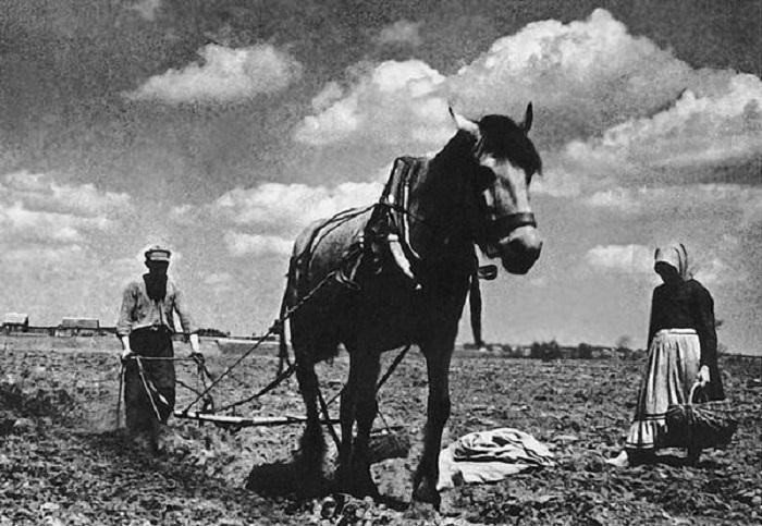 СССР 1930-40-х годов на документальных ретро-фотографиях Евгения Халдея.