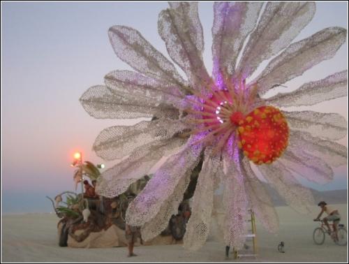 Цветок надежды (Hope Flower), 2005-2006