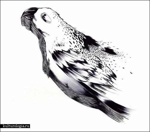 Рисунки шариковой ручкой от Шона Курунеру (Shawn Kuruneru)