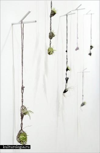Живое ожерелье от дизайнера-авангардиста Paula Hayes