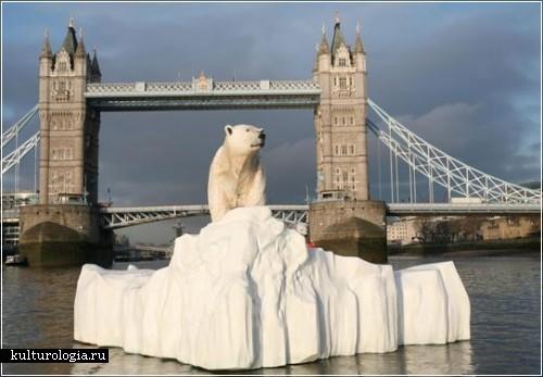 Полярные медведи в водах реки Темзы