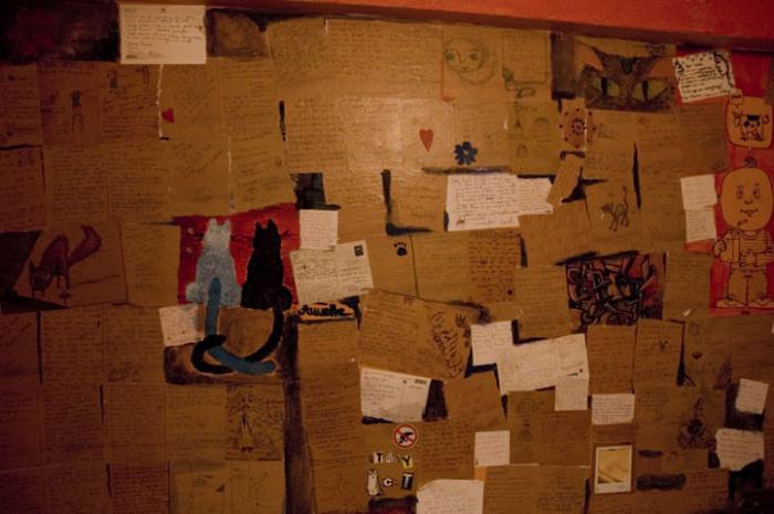 Бродячая кошка в хостеле. | Фото: atlasobscura.com.
