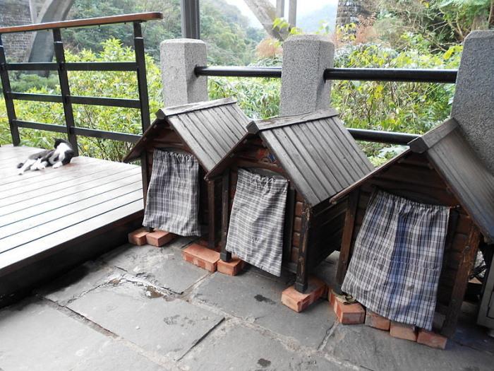 Кошачьи домики в Хутонге. | Фото: commons.wikimedia.org.