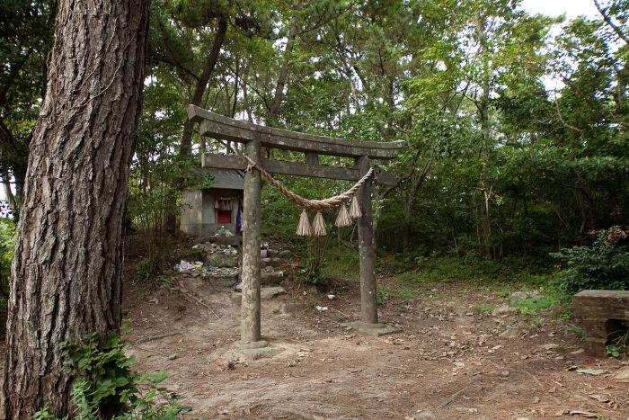 Храм кошек на острове Тасиро. | Фото: ru.wikipedia.org.
