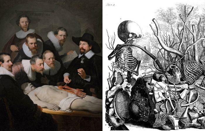 Голландская живопись и рисунок XVII века.