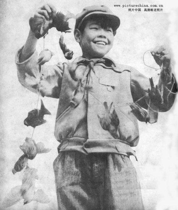 Мальчик со связкой убитых птичек. | Фото: liveinternet.ru.