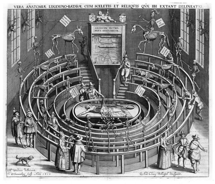 Анатомическая лекция в Лейденском университете, Нидерланды, начало 17-го века. | Фото: atlasobscura.com.