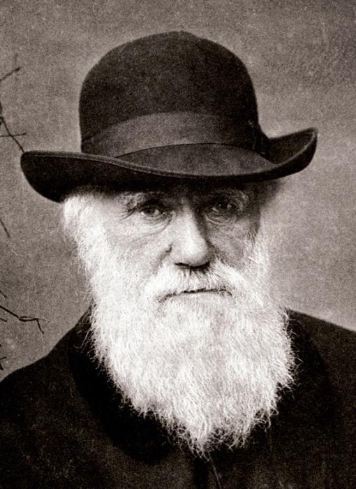 Английский натуралист Чарльз Дарвин. | Фото: novopetrivske-osoba.edukit.mk.ua.