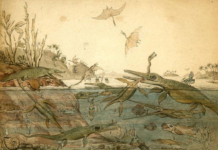 Duria Antiquior - известная акварель 1830 года геолога Генри де ла Беша, на которой изображена доисторическая жизнь морского побережья юрского периода. | Фото: atlasobscura.com.