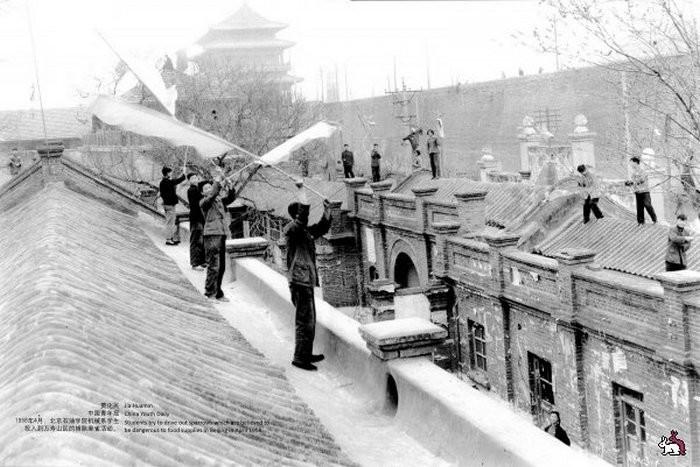 Китайцы сгоняют птиц с крыш домов. | Фото: fishki.net.