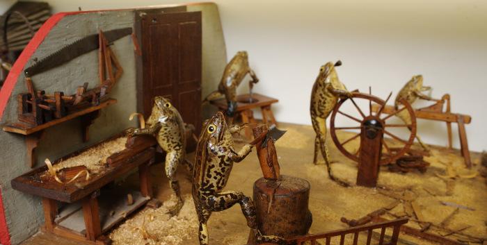 Лягушки за работой. | Фото: froggyland.net.