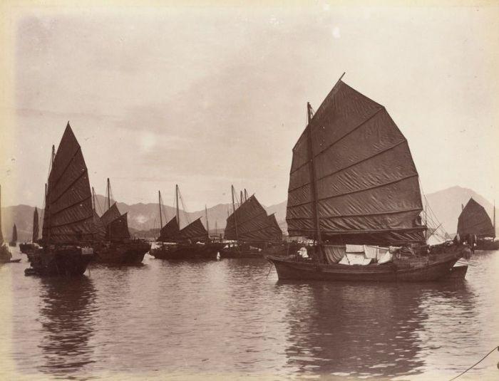Фотография джонок в Кантоне, около 1880 г. Считается, что Чжэн Ши командовала около 1800 таких пиратских кораблей. | Фото: atlasobscura.com.