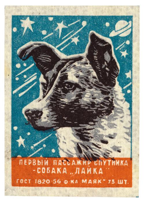 Спичечная этикетка, СССР, 1957 год. Это первое из многих последующих изображений советских собак в космосе.