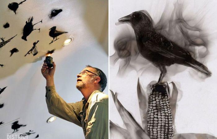 Стивен Спазук и его огненные птицы.