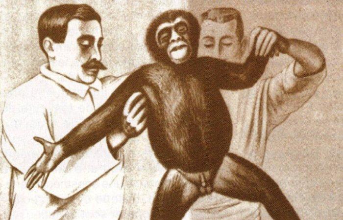 Доктор Воронов готовит обезьяну к операции. Фото: yorokobu.es.