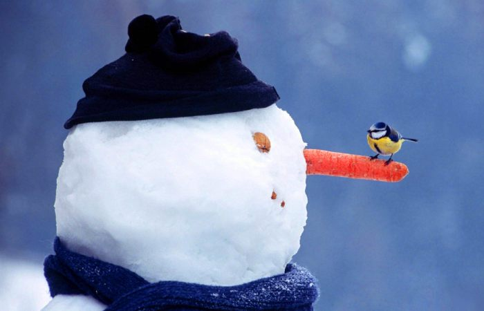 Снеговик – популярное зимнее развлечение. | Фото: fluper.ru.