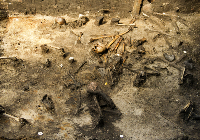 Археологические раскопки массового захоронения в Дании. | Фото: alkenenge.dk.