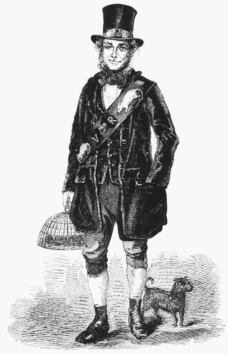 Джек Блэк, королевский крысолов, 1851 год. | Фото: en.wikipedia.org.