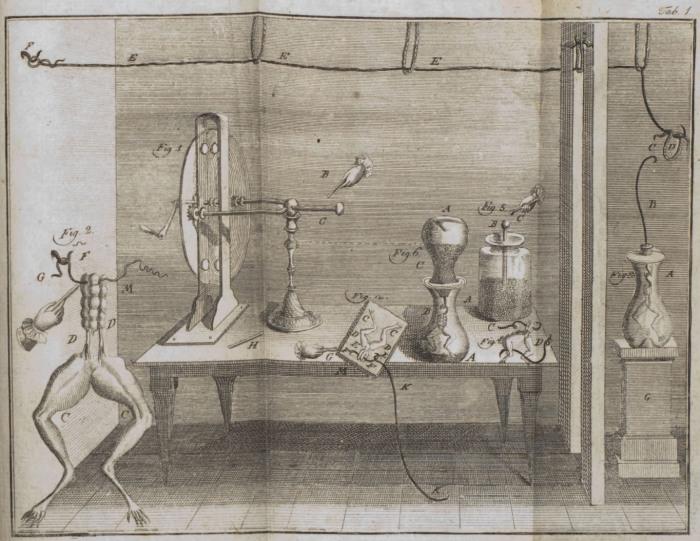 Схема эксперимента Луиджи Гальвани с мышцами лягушки, 1780 год. | Фото: upload.wikimedia.org.