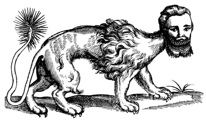 Страшный монстр с иголками на хвосте, которыми тот может стрелять. Гравюра XVII века. | Фото: cryptidz.wikia.com.